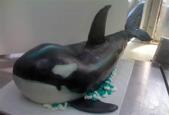 whale-cake