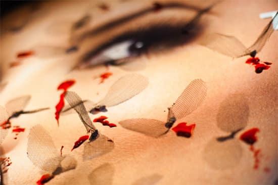 mosquito-eyes