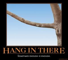 "Demotivational Posters and the ""Hang in There"" Cat Poster"