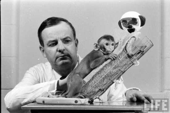8 Psychological Experiments Conducted on Animals5