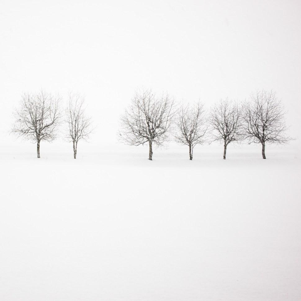 Hokkaido, Japan David duChemin