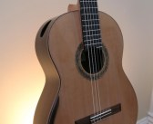 New 2016 Dominelli Double Top Guitar for Sale