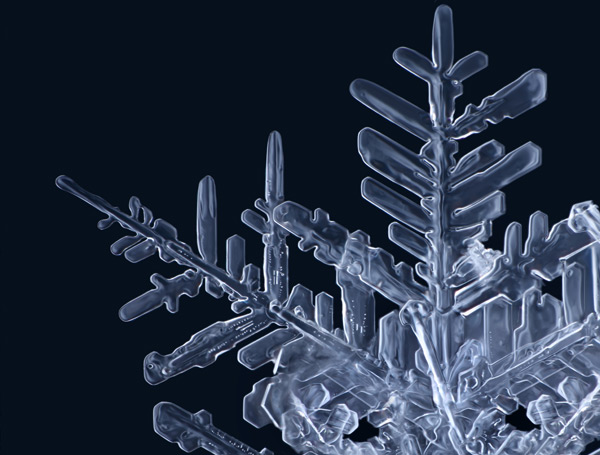 3d Geometric Shapes Wallpaper White Gorgeous Macro Photographs Of Snowflakes By Matthias Lenke