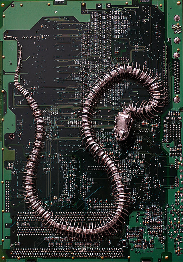 Motherboard Wallpaper 3d Circuit Board Fossils Paintings And Other Found Object
