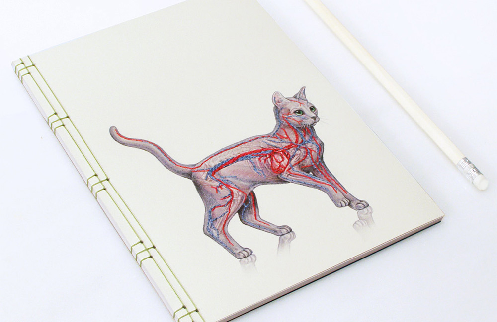 New Japanese Paper Notebooks Featuring Vintage Science - graph paper