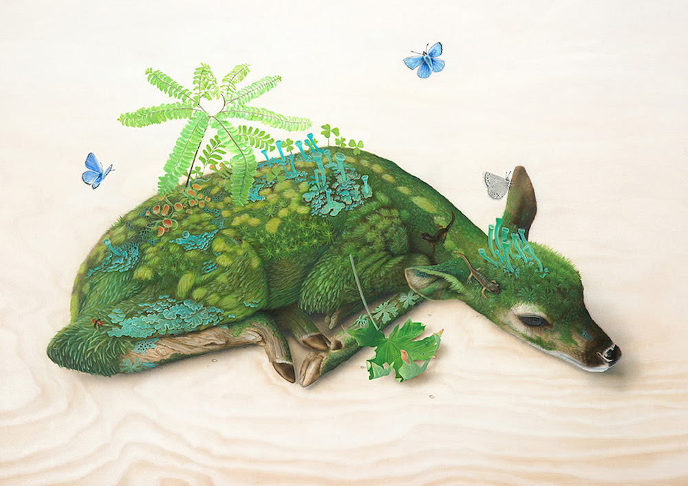 Domestic Animals Wallpaper New Surreal Wildlife Paintings By Tiffany Bozic Colossal