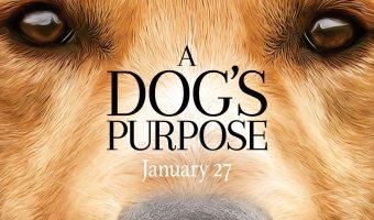 A Dog's Purpose Trailer + Movie Details! #ADogsPurpose