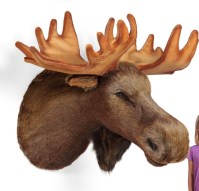 Mounted Stuffed Faux Animal Head Wall Hanging | Product ...