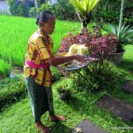 What To Do In Bali: Bali Tours With Locals