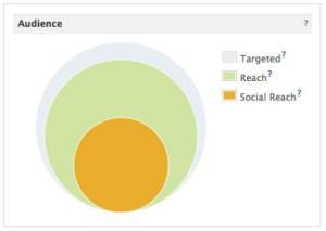 Targeted Audience, Reach und Social Reach