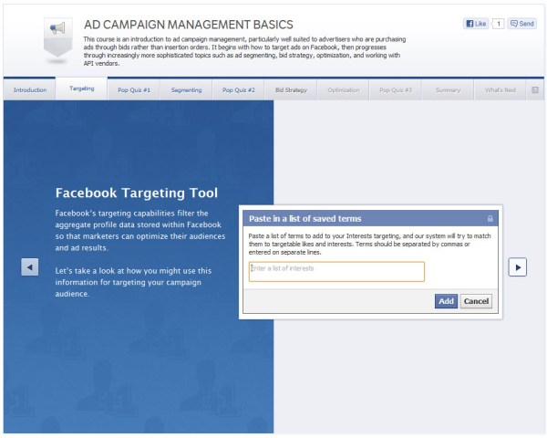 Ad Campaign Management Basics - Targeting