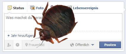 Facebook Seiten Publisher Bug