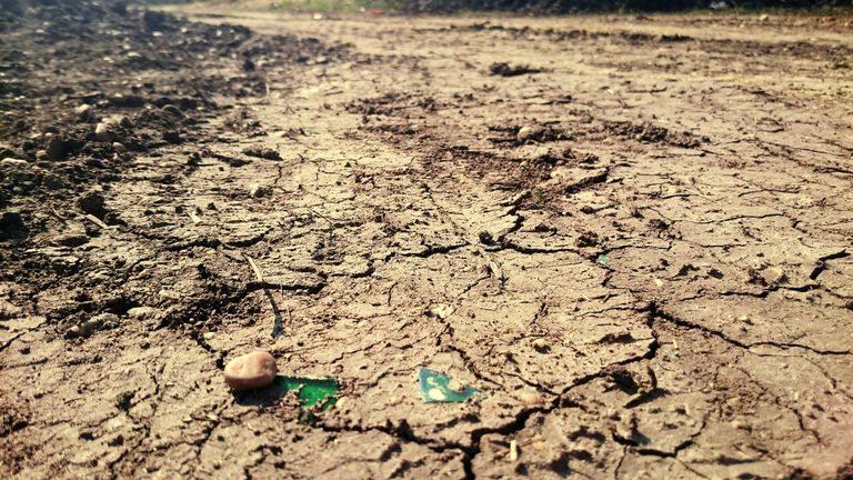 The Environmental Impacts Of Droughts