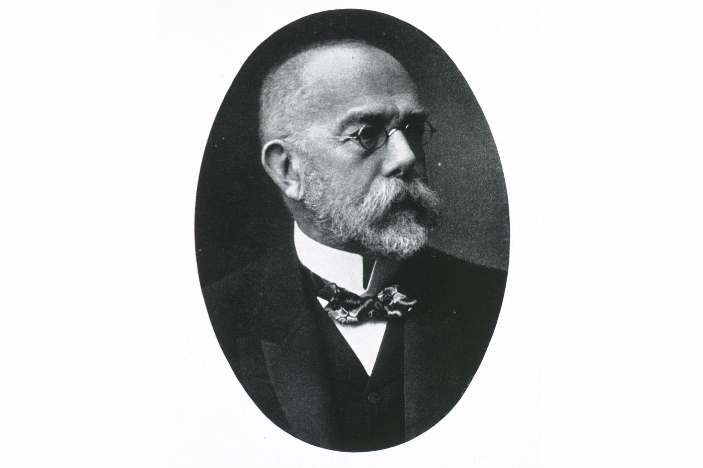 cv portrait photo