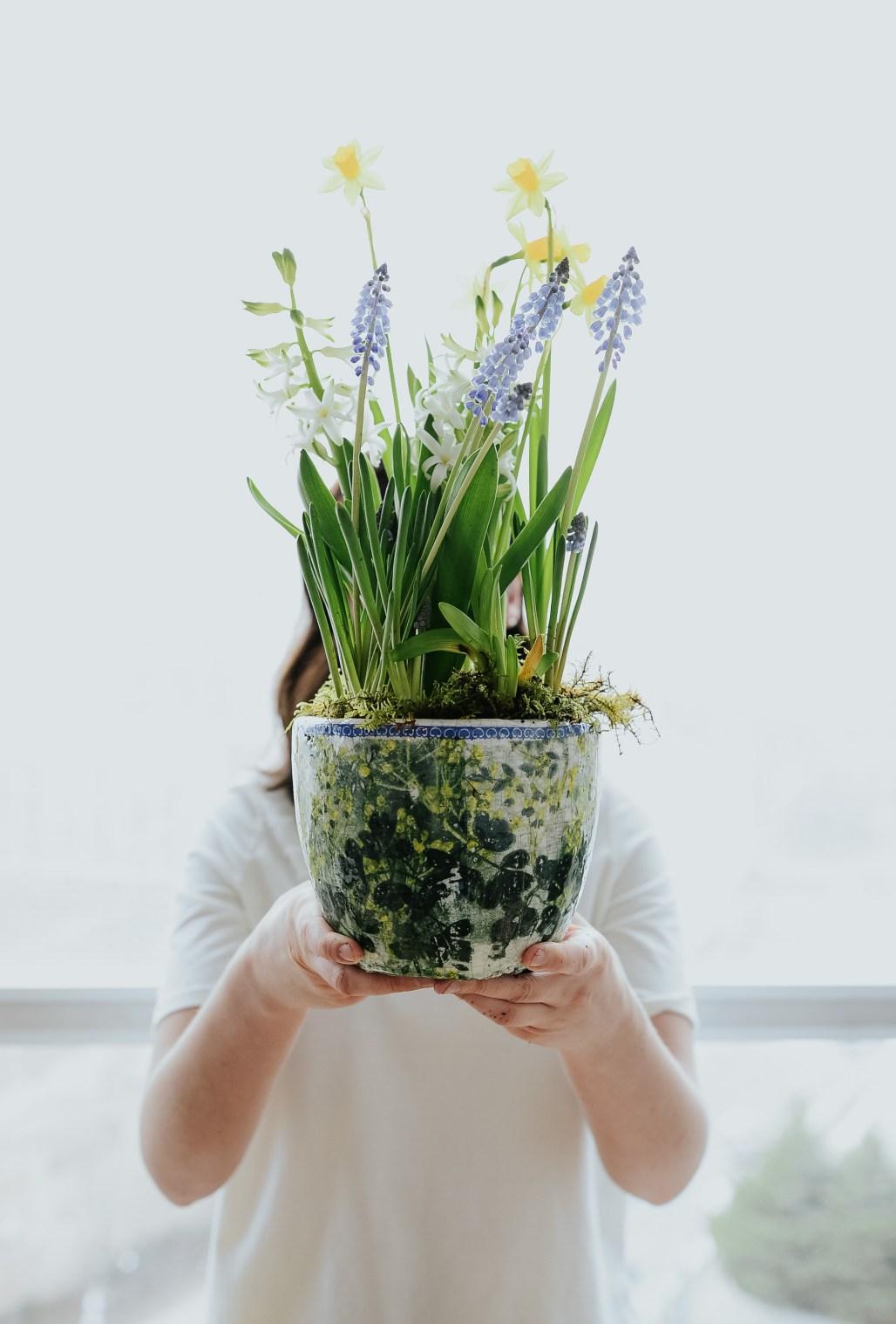 anthropologie-planter-arrangement-12