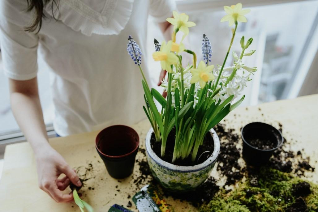 anthropologie-planter-arrangement-8