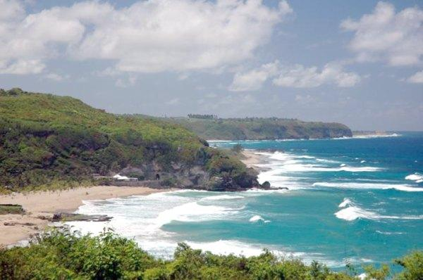 Forest in puerto rico there s guajataca beach this is a surfers beach