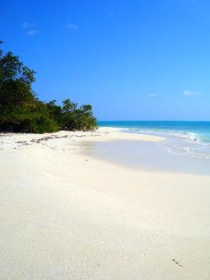 deserted beach Barbuda