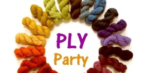 plyparty