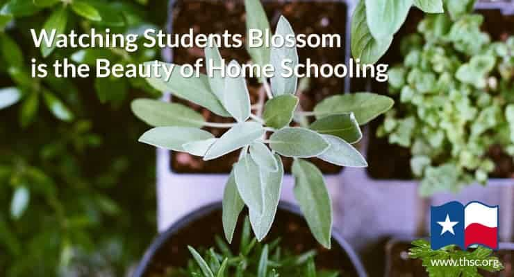 Watching Students Blossom is the Beauty of Home Schooling