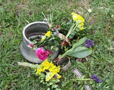 Еньовден: 77 и половина билки – за здраве и плодородие