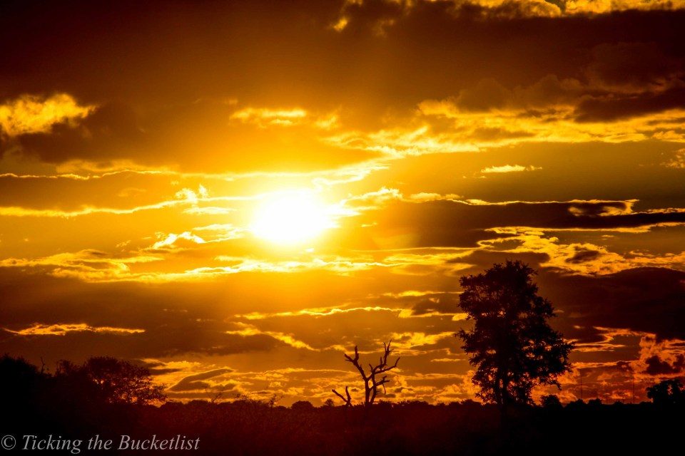 One of the most stunning sunsets that we have ever seen....at Kruger National Park in South Africa