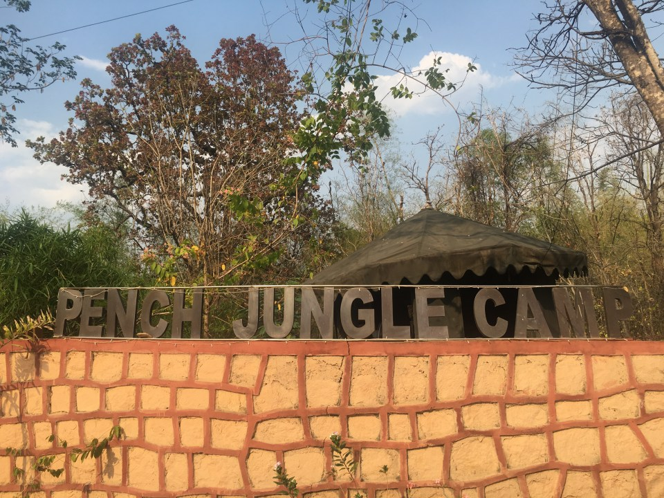 Our home for the weekend...Pench Jungle Camp