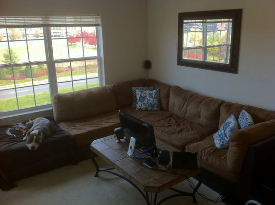 Bad Craigslist Couch