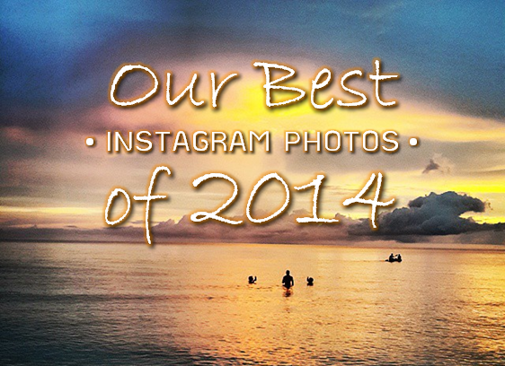 Our Best Instagram Photos of 2014