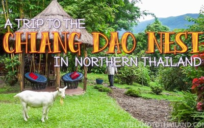A Trip to the Chiang Dao Nest in Northern Thailand