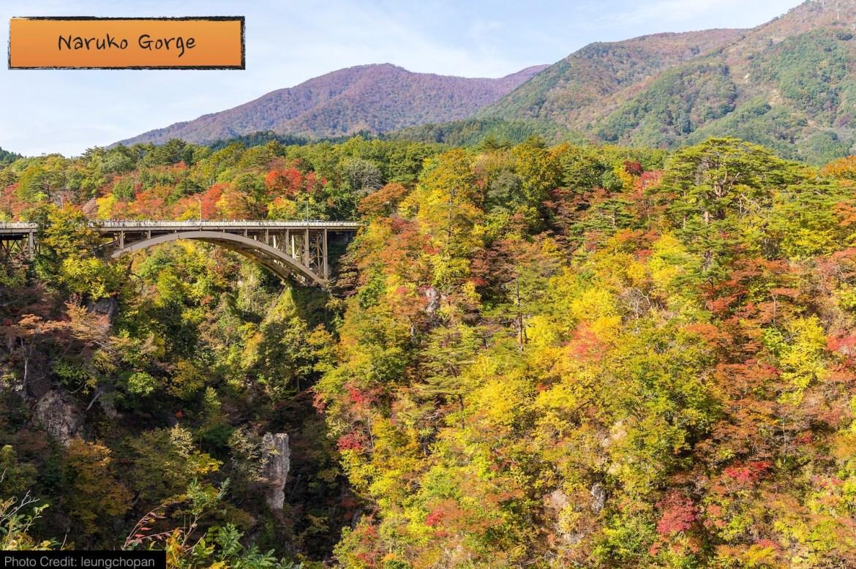 autumn_road_02