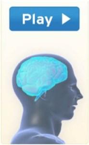 Play brain