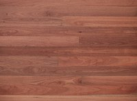 Sydney-Blue-Gum | Timber Flooring King