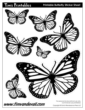 Printable Butterfly Templates and Butterfly Shapes - butterfly template