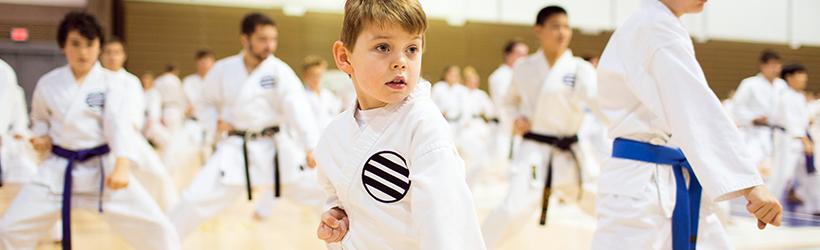 Karate, Judo, and Taekwondo Tinley Park-Park District