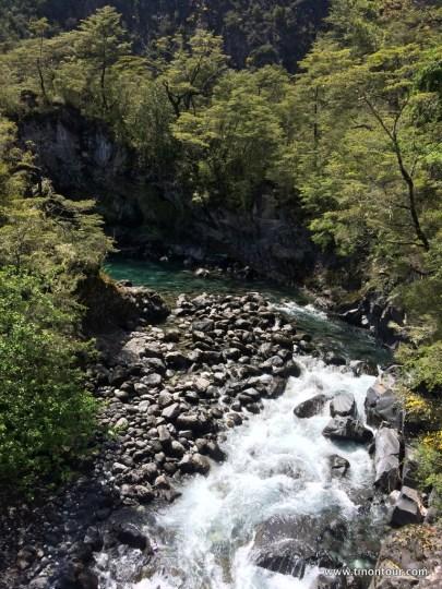 suedamerika-chile-2015-03-puerto-varas_22-IMG_0641