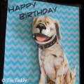 Tin Teddy Hound Dogs Clip Art