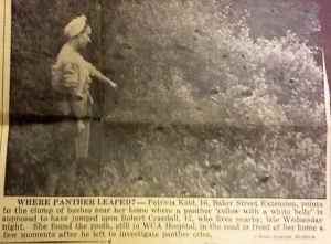 1946 Panther Attack