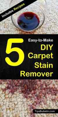 homemade carpet deodorizer pet urine | www ...