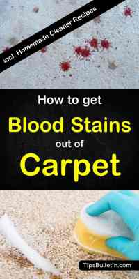 How To Get Blood Stains Out Of Carpet - Homemade Carpet ...