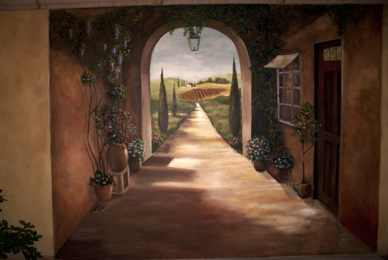 3d Stone Style Wallpaper Skywoods Decorative Painting Faux Finishing Murals Phoenix Az