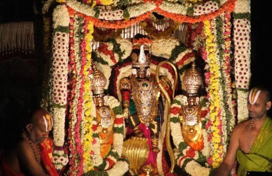 Lord Sri Venkateswara With His Divine Consorts During Brahmotsavams