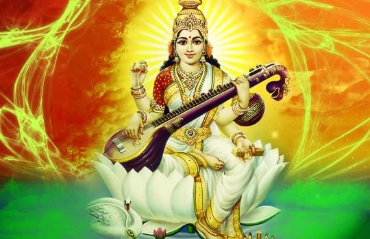 An Amazing Goddess Saraswathi Devi