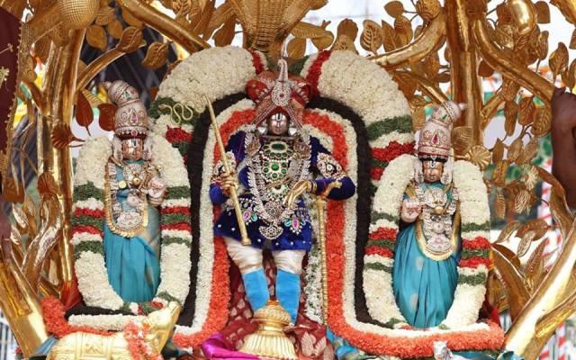 Kalpavriksha Vahanam