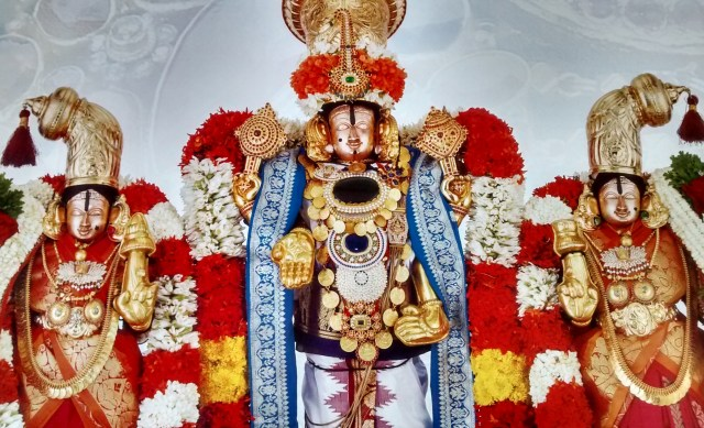 Lord Sri Venkateswara With His Divine Consorts