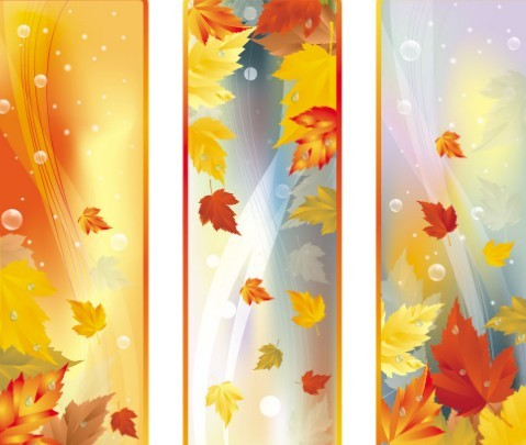 Fall Leaf Wallpaper For Mobile Free Set Of Vector Autumn Leaf Banners 02 Titanui