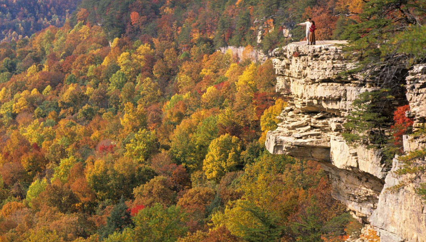 Cute Pumpkin Wallpaper Middle Tennessee Leaf Peeping Tennessee Vacation