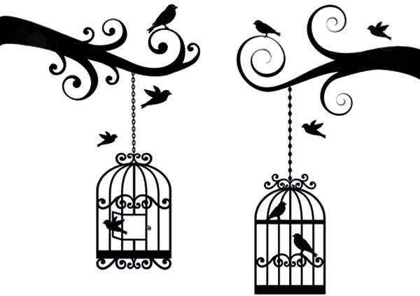 Bird Cage Lovely Vector Coloring Pages Best Place To Color