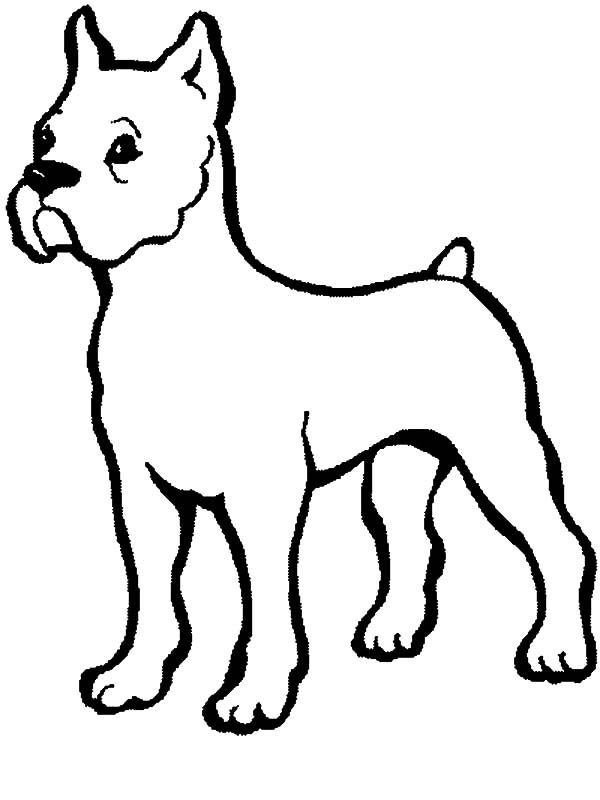 Boxer Dog Baby Coloring Pages Best Place to Color - best of coloring pages baby dog