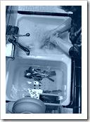 Lavando platos.